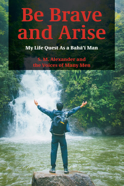 Be Brave and Arise Book Cover